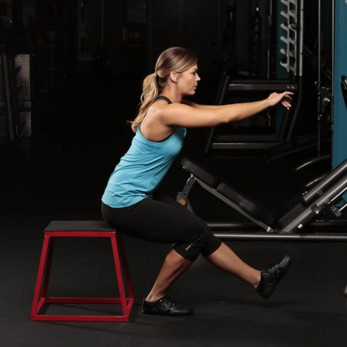 Pistol / Single-Leg Extended Arm Squats