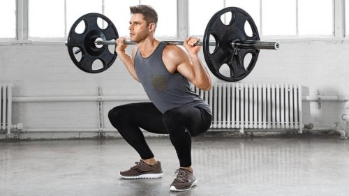Squat (High And Low Bar)